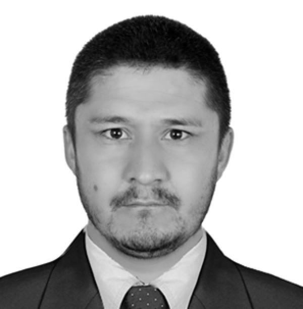 Mr Sayed Dawood Mosavi