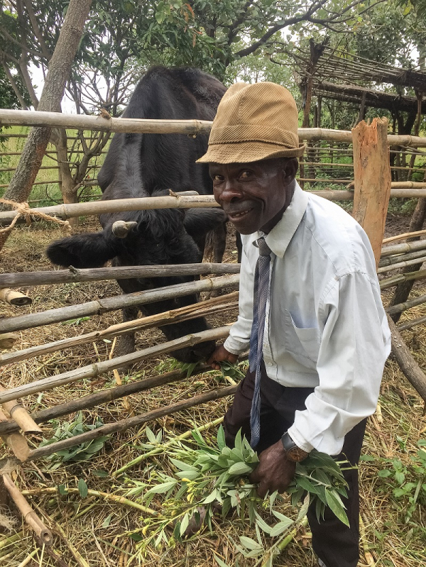 Transforming farmer groups to accelerate smallholder growth